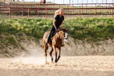 Outdoor shot of beauty blond woman riding horse at daytime. Young woman in sporty clothes enjoying horseback riding at racecourse