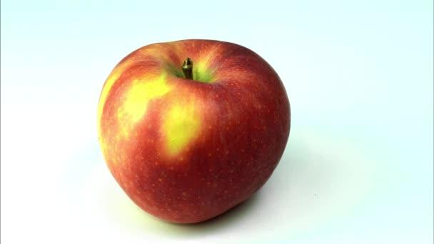 rotující červené jablko izolované na bílém, 4k Video