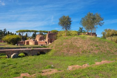 Ancient ruins on Palatine Hill, Rome