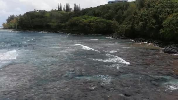 Aerial camera swirls above the water near a black rocky shore with dense forest (Kauai, Hawaii, USA)