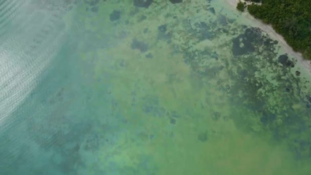 Drone footage of green sea water, coral bottom and coast with bushes Antigua and Barbuda