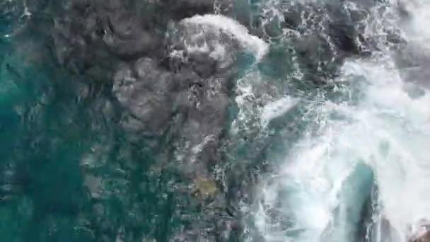Luftkamera fängt Schildkröten in den blauen Wellen des Ozeans nahe der Steinküste von Kauai, Hawaii, USA ein