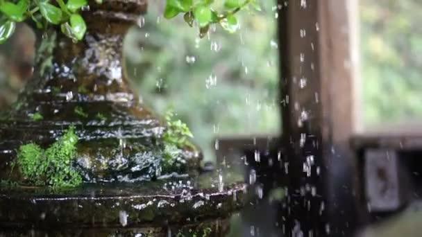 Vízcseppek és cseppek agyagedényt trópusi zöld kertben, lassú mozgás, 120 fps