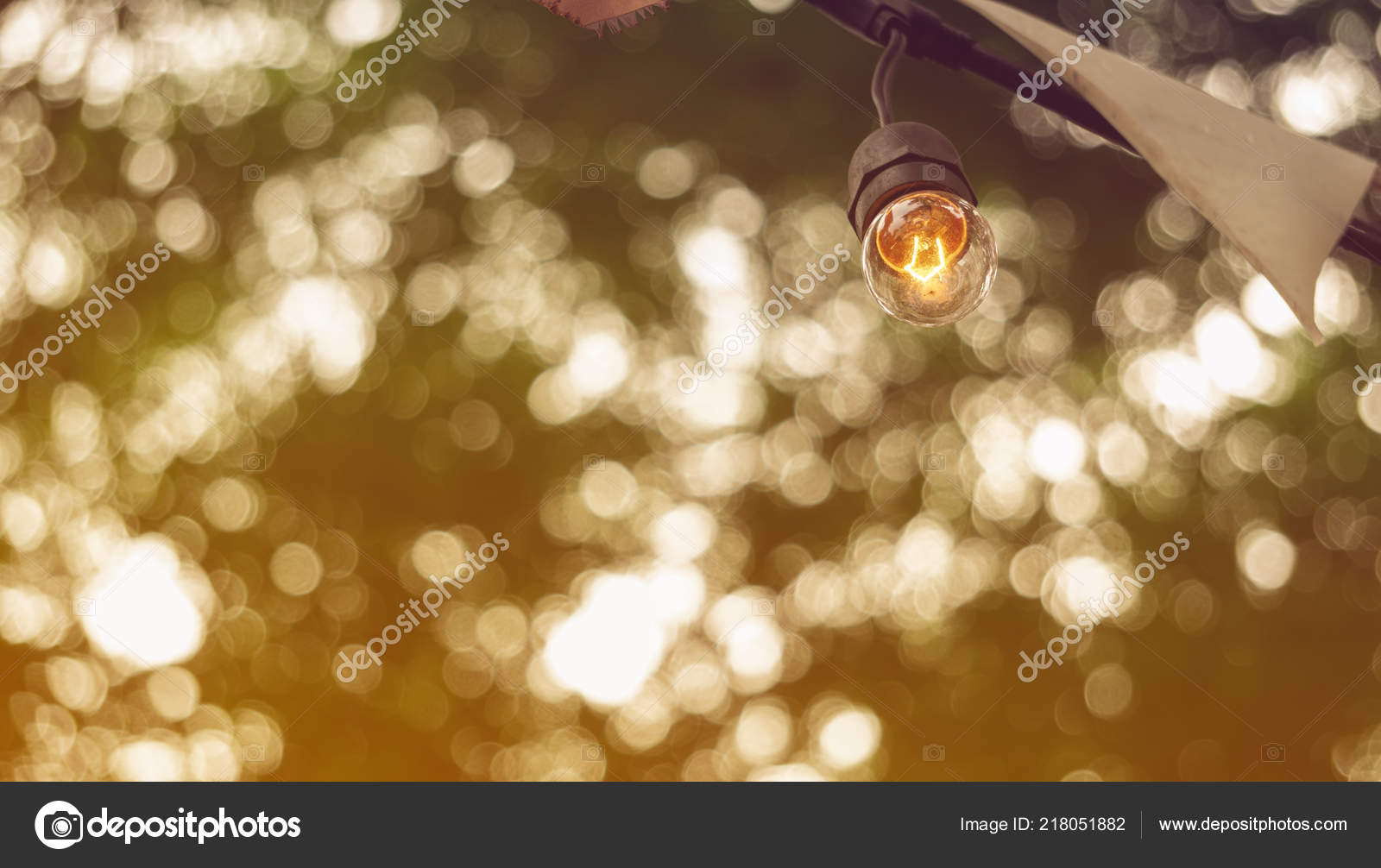 festive party light bulbs hanging green tree background copy space