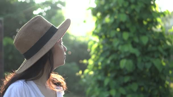 Asian Woman Travel Tropical Morning Sunlight Lush Nature