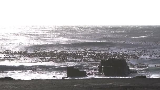 Dobrá naděje zálivu silnou vlnu Jižní Afrika mezník bodu divoké přírody podmínka