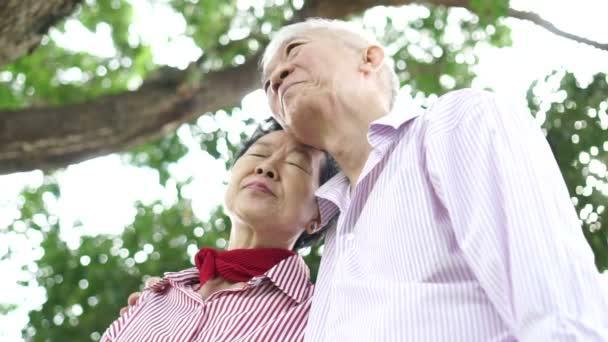 asiatische alte Senioren Paar ruht auf einander Schulter zusammen in der Natur Hintergrund