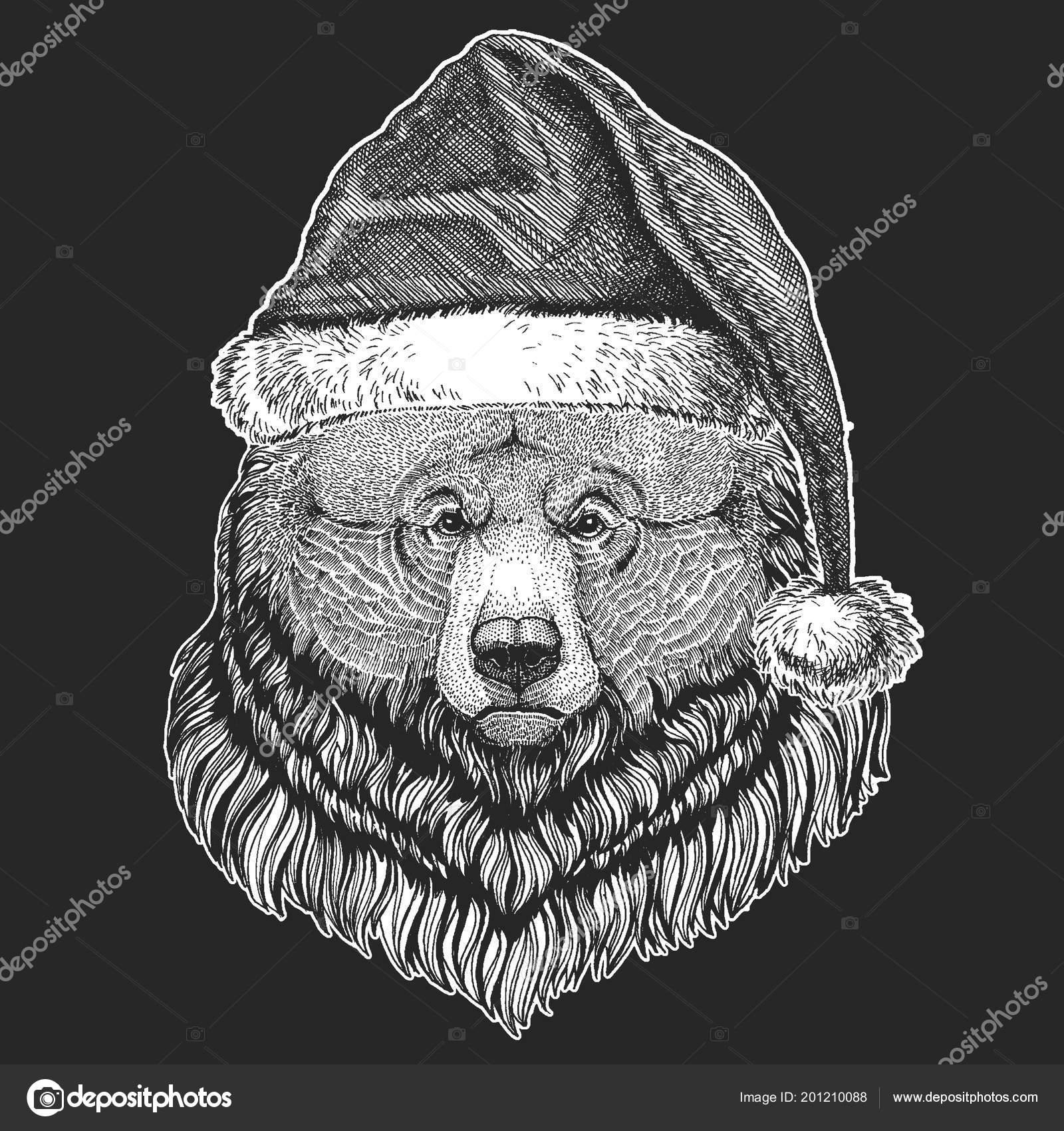 9501f0152e02c Urso urso selvagem grande Natal