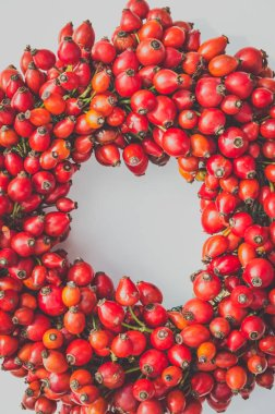 frame from healthy red rosehip berries
