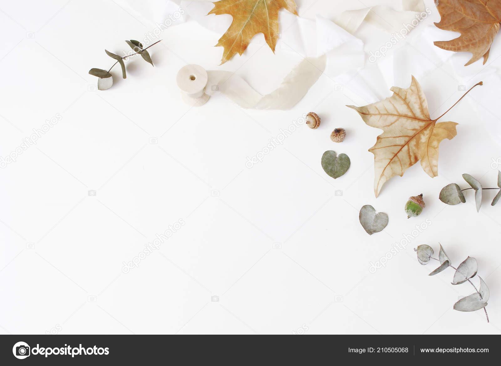 Otoño Creativo Estilo De Composición Arreglo Floral Otoñal