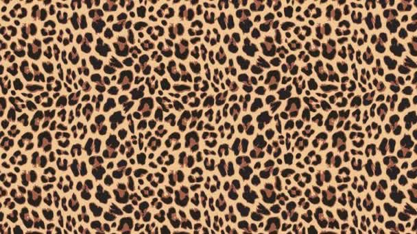 Close up, slow motion of moving leopard hair. Seamless loopable animationof beautiful exotic animal pattern. Abstract natural background. African wild cat fur.