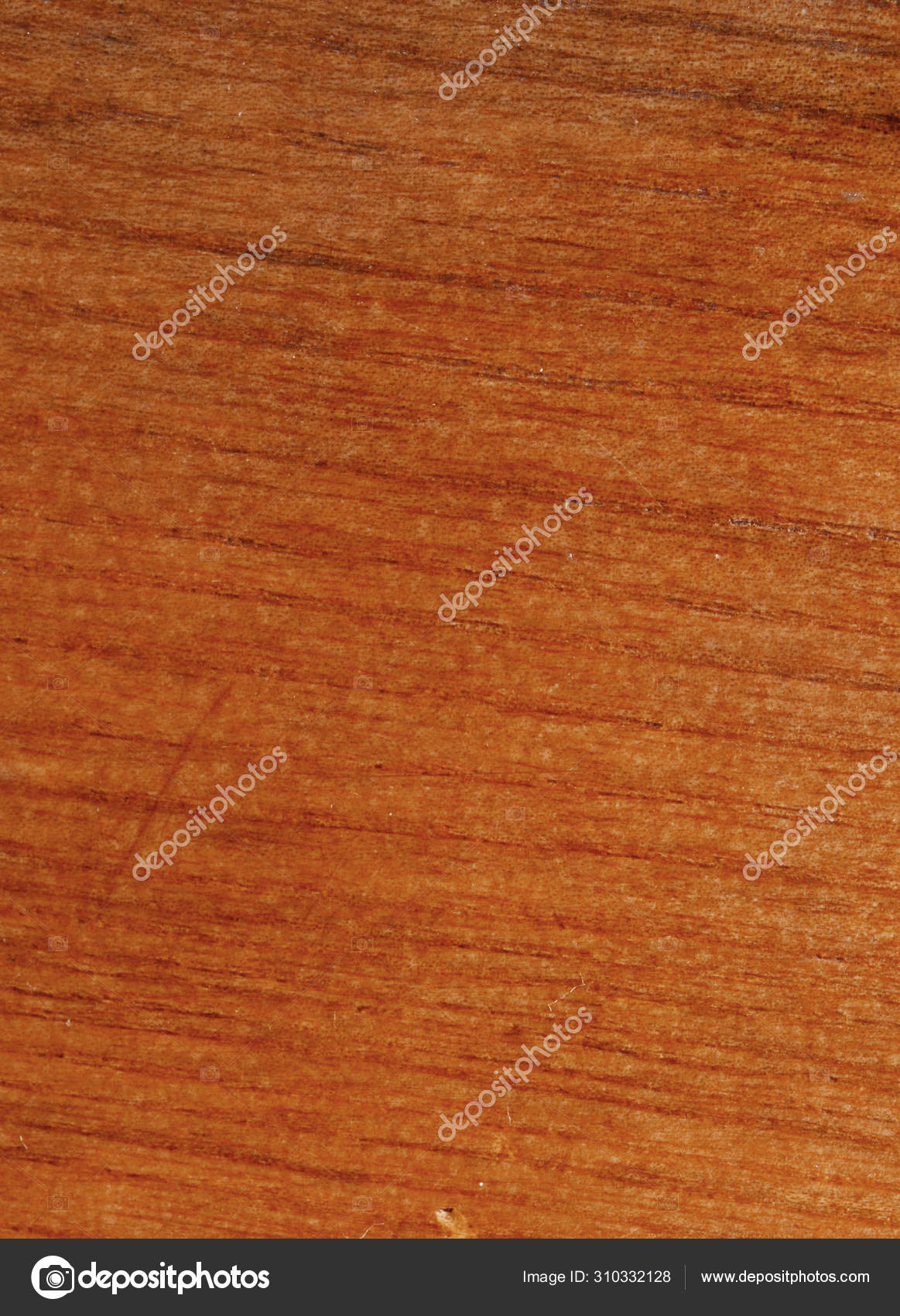 Beige Teak Veneer Texture Your Awesome Project High Resolution Photo Stock Photo C Giapvotriduc 310332128