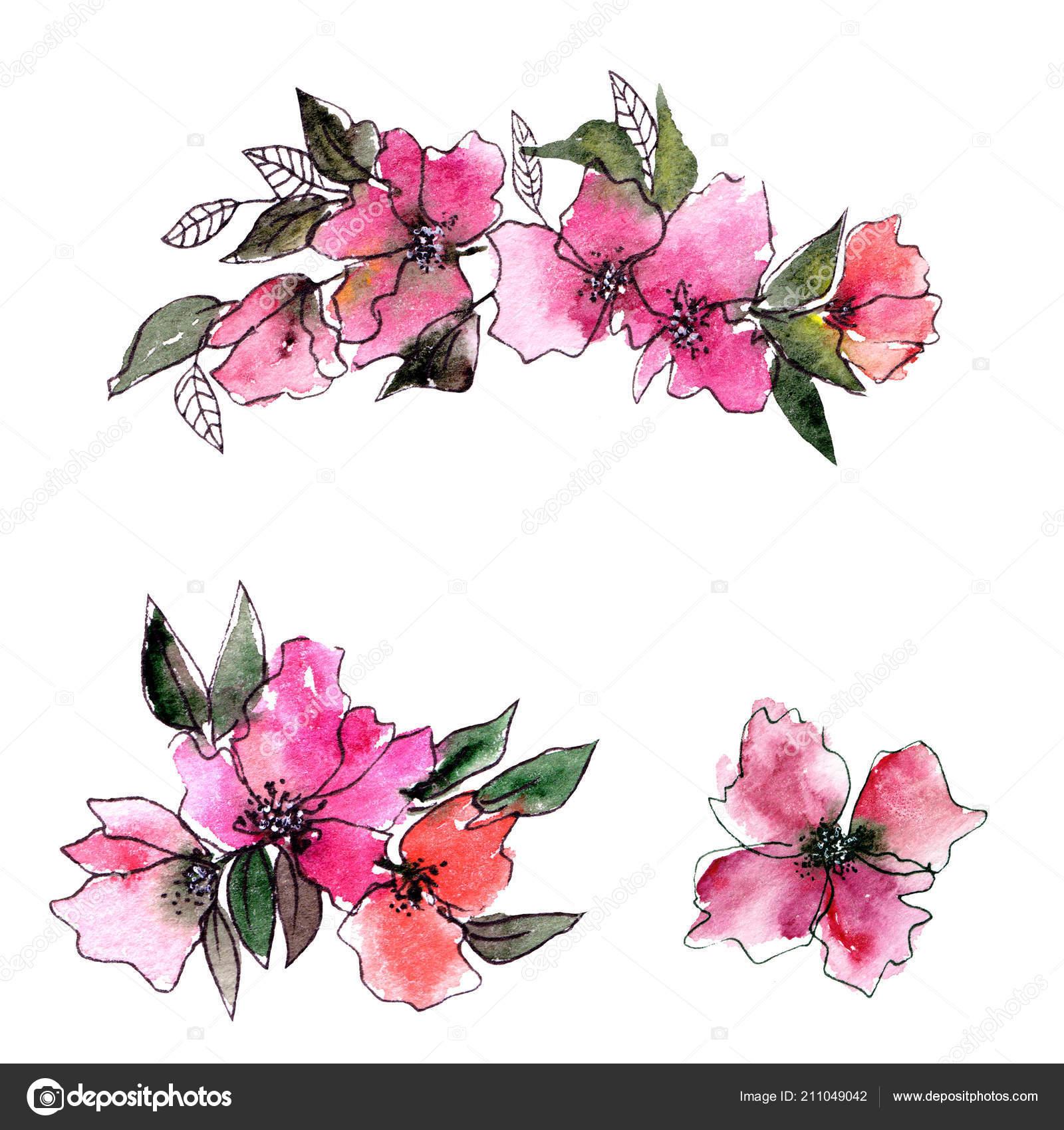 Floral Decorative Elements Watercolor Floral Decor Greeting Card