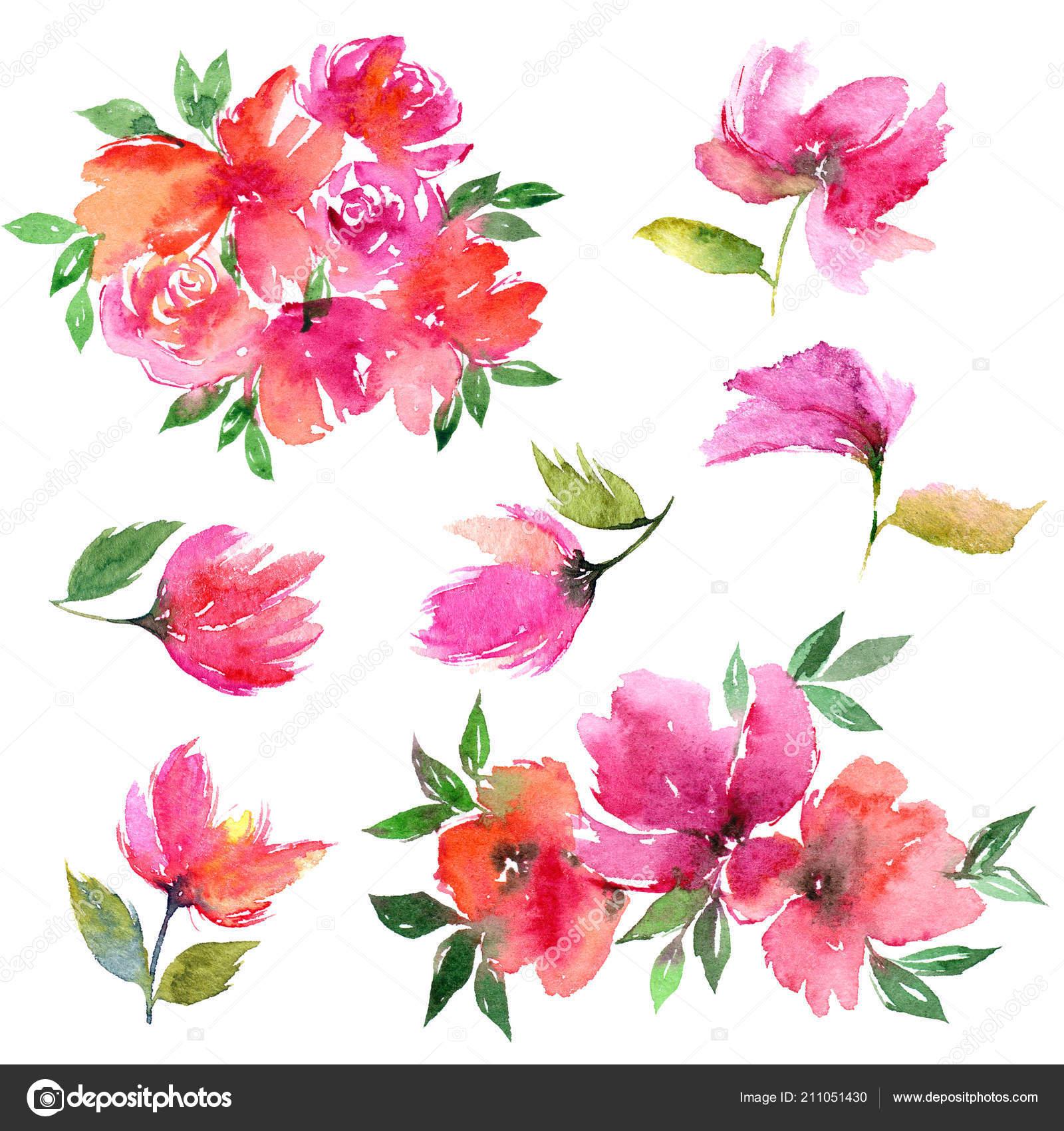 Aquarelles Fleurs Floral Pour Decor Carte Voeux Dessin Fleurs