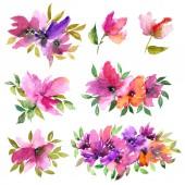 Akvarelu květiny. Floral pro blahopřání výzdobou. Kresba květiny. Romantické květinové sady. Květinové dekorativní prvky