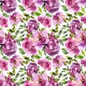 Varrat nélküli virágos háttér. Akvarell pünkösdi rózsa. Varrat nélküli virágmintás.