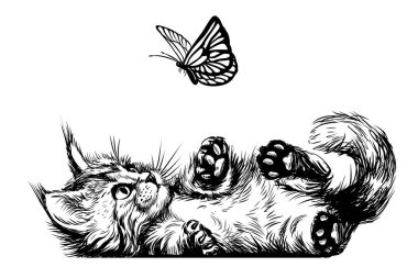 A kitten is playing with a butterfly. A wall sticker with the image of a Maine Coon kitten.