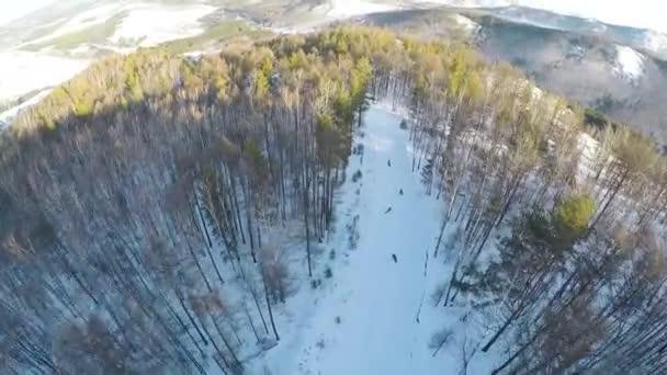 Letecký pohled na snowboardisty jedoucí v horách.