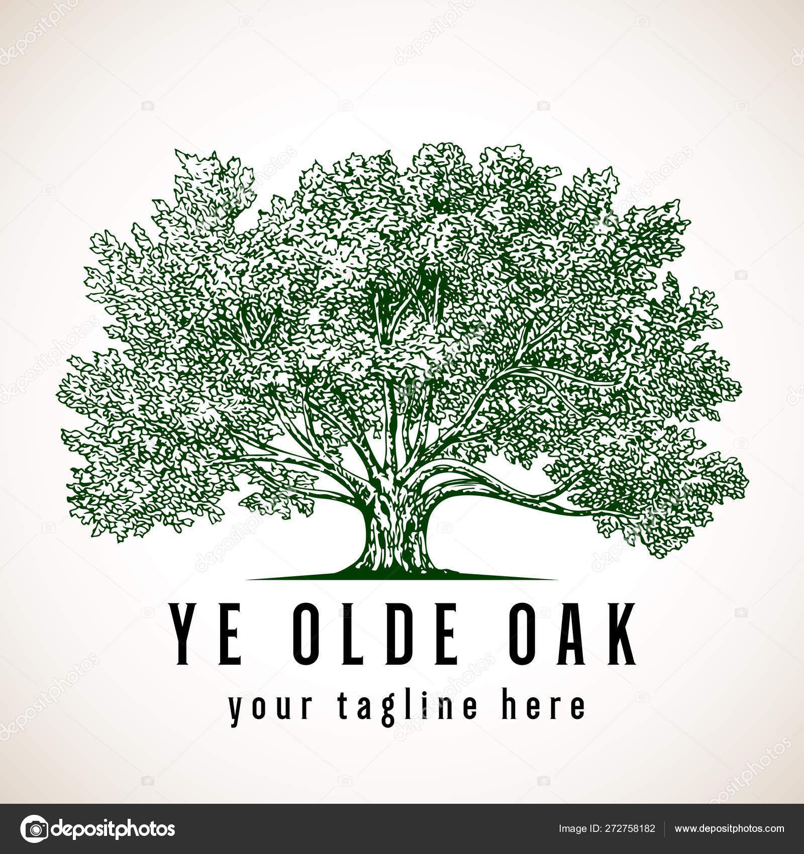 Tree Logo Vintage Style Illustration Oak Tree Vector Image By C Giraphics Vector Stock 272758182