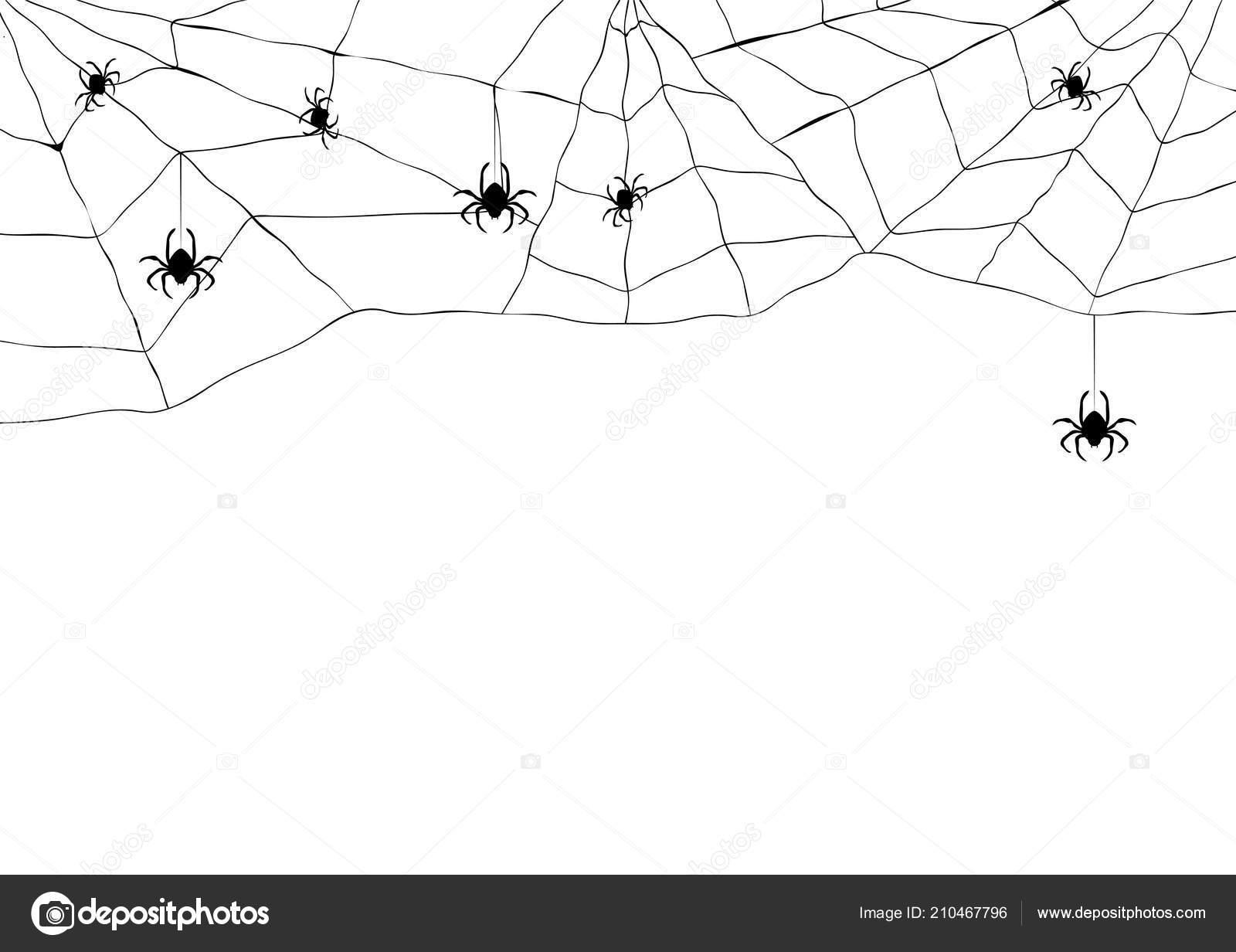 Araignée Noire Web Déchiré Toile Araignée Effrayant Symbole