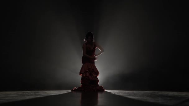 Girl is dancing flamenco dance . Light from behind. Smoke background