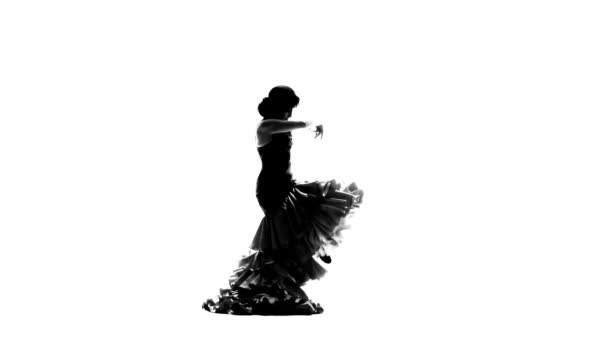 Dance of flamenco is sexually dancing girl. White background. Silhouette