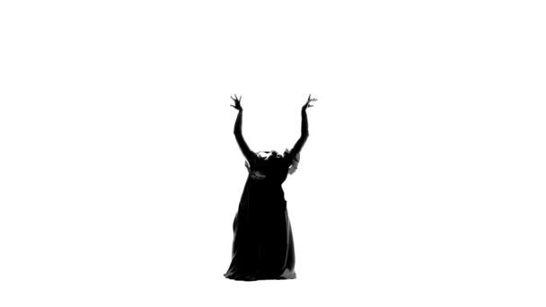 Graceful movements of the dancer in the flamenco dance take their breath away. White background. Silhouette