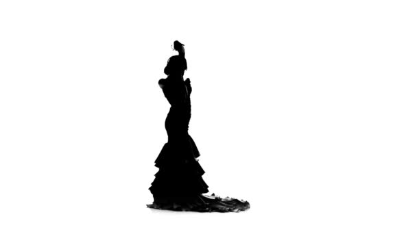 Flamenco. Girl is dancing castanets in her hands dancing. White background. Silhouette