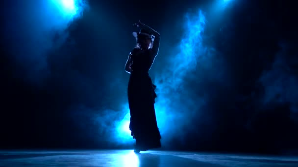 Dancer in an incendiary dance of Argentine flamenco . Llight from behind. Smoke background. Silhouette
