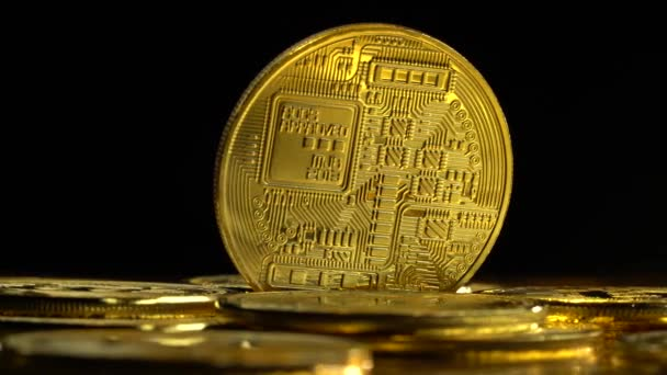 343b793525b Gold coins bitcoin cryptocurrency spinning on a black background. Close up–  stock footage