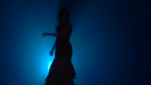 Woman dances flamenco movements . Light from behind. Smoke blue background. Slow motion