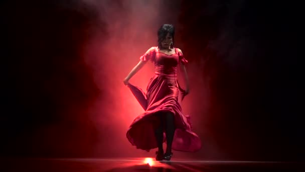 Dancer an incendiary dance of Argentine flamenco . Llight from behind. Smoke background. Slow motion