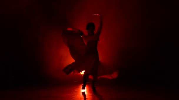 Dancer of Argentine flamenco. Red background. Silhouette. Slow motion