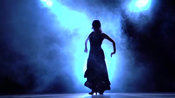 Dancer in a chic dress in an incendiary dance of flamenco . Llight from behind. Smoke background. Silhouette. Slow motion