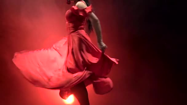 Dancer in a chic dress turns in an incendiary dance of Argentine flamenco . Llight from behind. Smoke background. Slow motion.