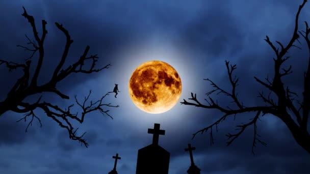 Silueta mladé čarodějnice létající na koštěti na pozadí oranžový měsíc. Halloween. Staré stromy a hřbitov
