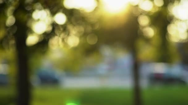 Defocus view from the park to the roadway bokeh background