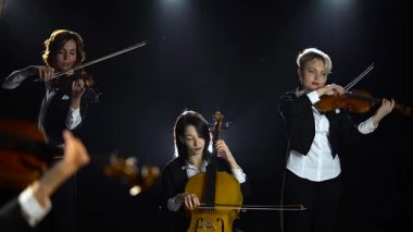 cd6112c5301f3 String Quartet performs at solo concert stage light. Black smoke  background. Close up Stock