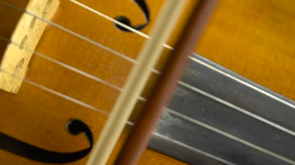 Close up violin playing