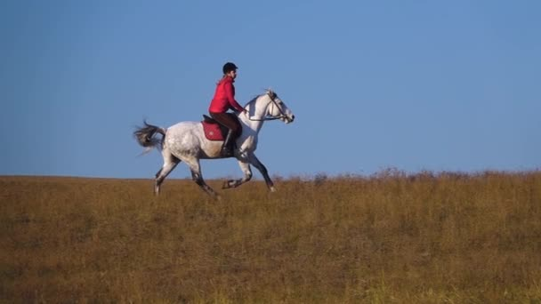 Girl gallops on a horse. Slow motion