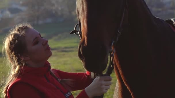 Horsewoman kisses a horse at sunset. Slow motion. Side view. Close up