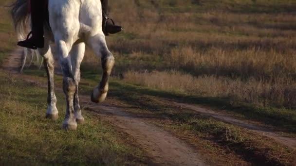 Kopyta koně tryskem na koních. Zpomalený pohyb. Detailní záběr