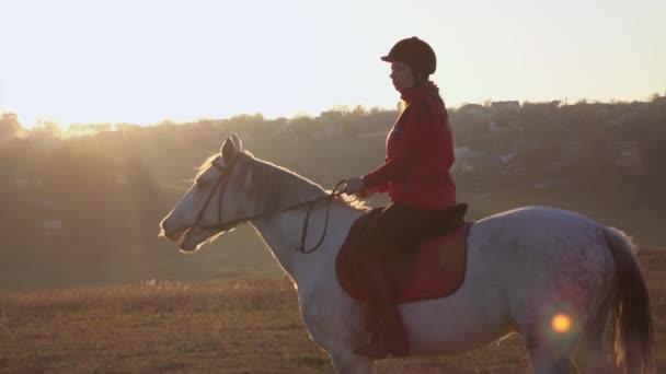 Jezdkyně na koni uprostřed pole. Zpomalený pohyb. Boční pohled