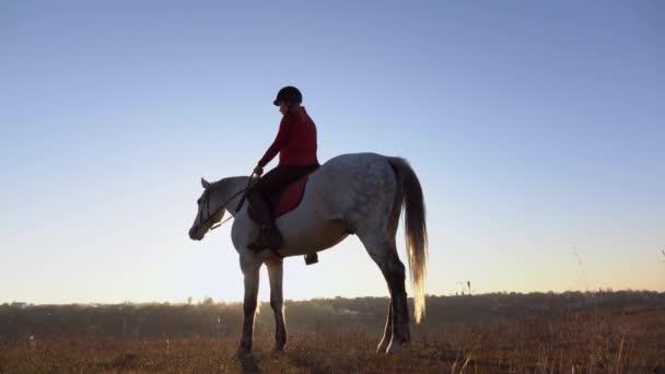 Žena na pozadí krajiny na koni ve středu pole. Zpomalený pohyb. Boční pohled