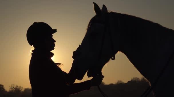 Žena stojící na louce a hladil koně a krásný západ slunce. Silueta. Zpomalený pohyb. Boční pohled. Detailní záběr