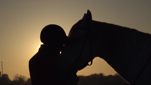 Jezdkyně polibky koně při západu slunce. Silueta. Zpomalený pohyb. Boční pohled. Detailní záběr