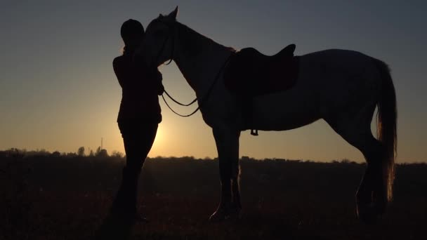 Girl is standing in the meadow and stroking the horse a beautiful sunset. Slow motion. Silhouette