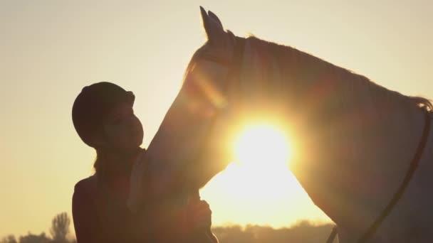 Lovasnő területén állandó, és megsimogatta a ló, a gyönyörű naplemente. Lassú mozgás. Közelről