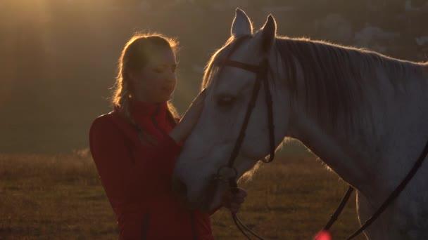 Lány területén állandó, és megsimogatta a ló, a naplemente. Lassú mozgás. Közelről