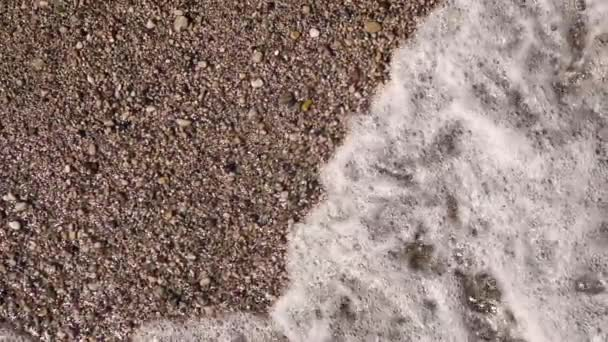 Seashells on sand beach with waves in sunlight on hot day. Close up. Slow motion. Top view